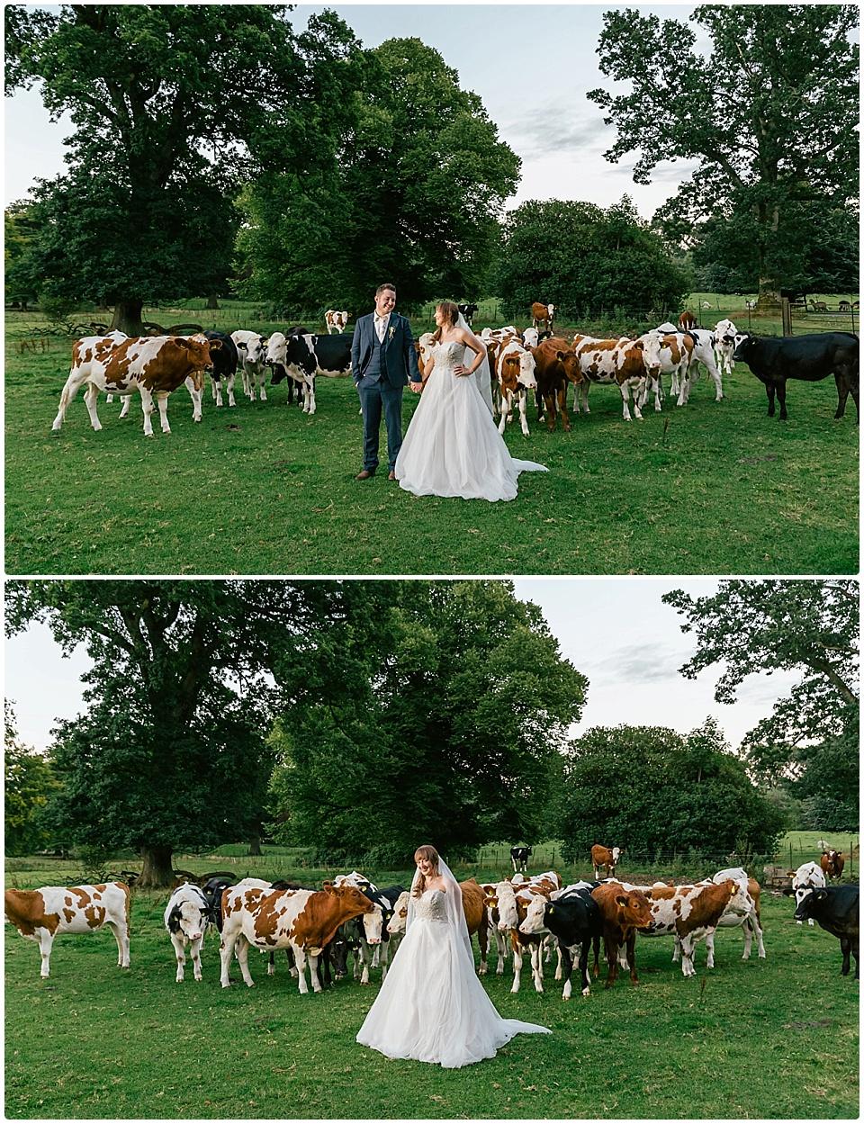 jade conor wedding photography larchfield estate 0166
